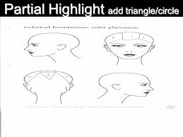 hair color and foil placement techniques rainbow ppt video online download