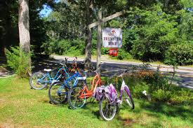 and action cape cod offers a host of fun ways to get moving
