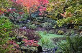 Botanical Gardens Seattle Dazzling Places Seattle Tourist Attractions Bellevue Botanical