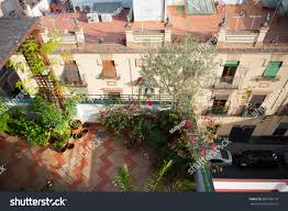 beautiful small rooftop garden lots potted stock photo 583790110