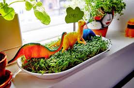 indoor gardening ideas for kids