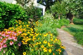 native plants of pa garden design in chester county naturescapes landscaping of paoli pa
