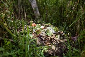 Composting Pictures by Human Added To Compost Boosts Crops U2013 National Geographic