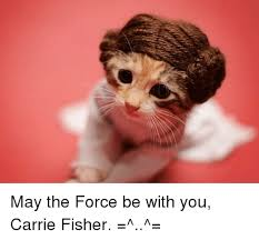 May The Force Be With You Meme - 25 best memes about may the force be with you may the force be