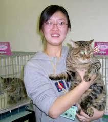 Hair Dryer Khusus Kucing kucing li li hua li hua mao beaver hua mao cat