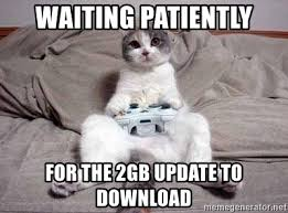 Meme Video Download - waiting patiently for the 2gb update to download video game cat