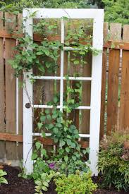 How To Build A Trellis French Door Trellis With Clematis Flowers Needed 3 Doors To Make