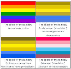 Most Common Colour Blindness Color Blind Glasses Pilestone Colorblind Home