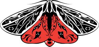 virgo tiger moth tattoo design by opaqueninja00 on deviantart