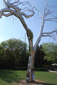 metal tree in washington dc outdoor sculpture garden