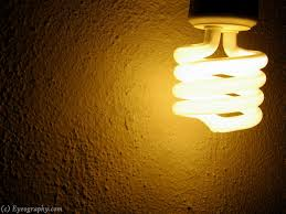 discounting energy savings lessons from incandescent light bulbs