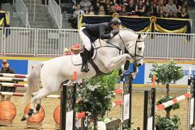 the 95th royal agricultural winter fair trots into toronto this