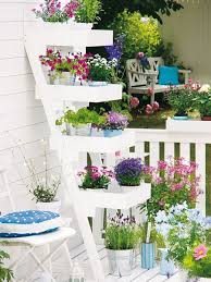 pflanzen fã r den balkon 149 best balkon images on small balconies balcony