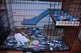 Rabbit Hutch Ramp Bunspace Com Forum Questions About Rabbit House