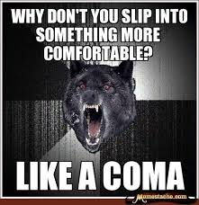 Meme Insanity Wolf - 53 best insanity wolf images on pinterest funny stuff funny