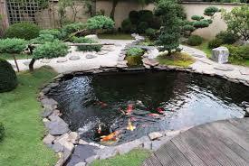 garden pond fish the gardens
