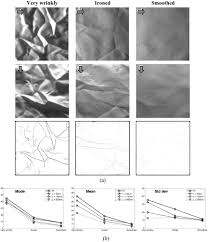 influence of the wrinkle perception with distance in the objective