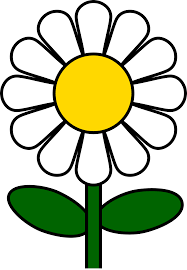 white daisy flower clipart clipartxtras