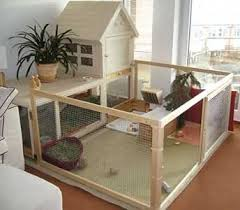 Build Your Own Rabbit Hutch Best 25 Guinea Pig Hutch Ideas On Pinterest Cavy Guinea