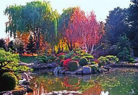 Colorado Botanical Gardens Lovable Denver Botanic Gardens Botanical Gardens Denver