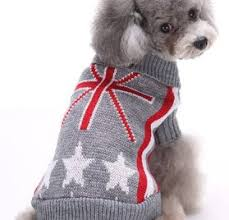 chihuahua sweaters chihuahua sweaters and jackets for cold weather
