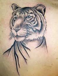 hair twine white tiger