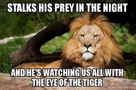 Eye Of The Tiger Meme - stalks his prey in the night and he s watching us all with the eye