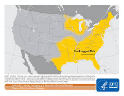 Lyme Disease Map How To Keep Yourself Safe From Lyme Disease