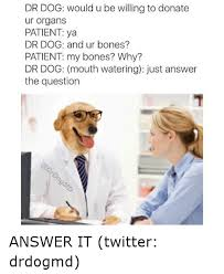 Mouth Watering Meme - dr dog would u be willing to donate ur organs patient ya dr dog and
