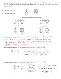 genetics practice problems pedigree tables genetics practice problems pedigree tables