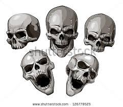 set skulls vector illustration stock vector 2018 126779525