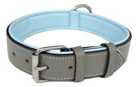 Comfortable Dog Collars Amazon Com Soft Touch Collars Padded Leather Dog Collar Large