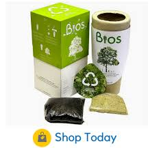 bios urn tree urns review the best 4 bio urns on the market today