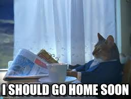 Go Home Meme - i should go home soon one percent cat meme on memegen