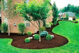 landscaping tree ideas gurdjieffouspensky