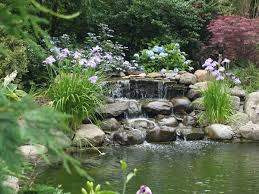 lawn u0026 garden small garden fish pond with stone water features