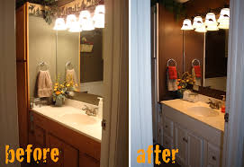 Bathroom Makeovers Before And After Pictures - elephant juice bathroom makeover before u0026 after