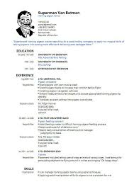 resume exle format pdf resume template for fresher free word excel pdf format sle