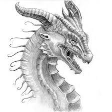 pencil dragon face by danielle lynn http liquiddragonn