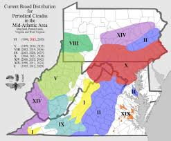 Map Of Middlesex County Nj Cicadas Info