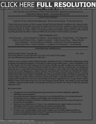 Resume Career Summary Example by Resume Executive Summary Sample Resume For Your Job Application
