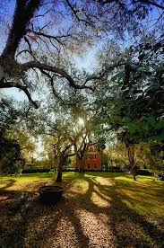 Louisiana how to travel light images Shadows on the teche plantation new iberia louisiana travel jpg