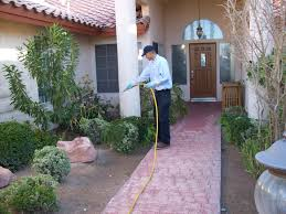 pest control in bangalore treatment services companies search pointer