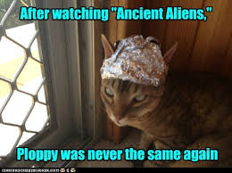 Cat Alien Meme - lolcats ancient aliens lol at funny cat memes funny cat
