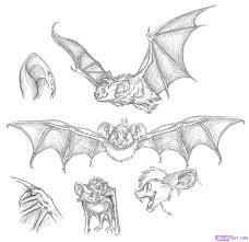 draw a cartoon bat step by step drawing sheets added by dawn