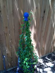 free standing trellis made with an upside down tomato cage and