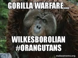 Gorilla Warfare Meme - gorilla warfare wilkesborolian orangutans make a meme