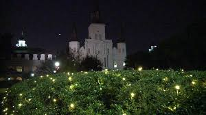 jackson square lit up christmas new orleans style begins wgno