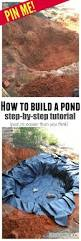 best 25 turtle pond ideas on pinterest diy pond outdoor ponds