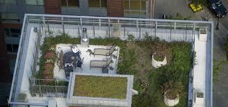 water efficient landscaping san jose ca drought tolerant